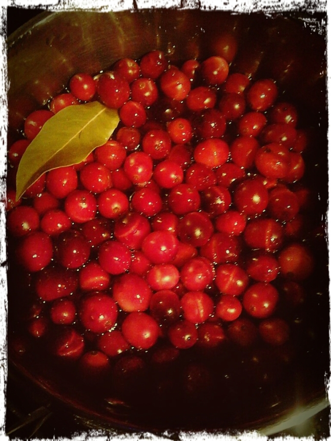 Happy Thanksgiving from Kittles Family Artworks! (Photo taken and edited on cell by John. I was busy cooking those cranberries!)