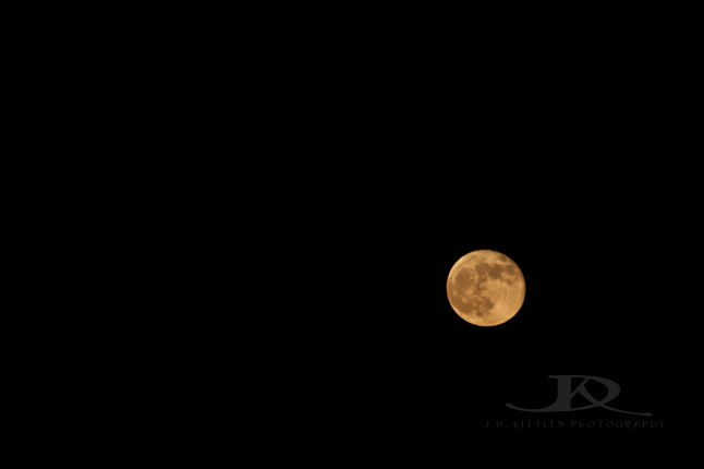 Harvest Moon taken by J.D. Kittles Photography and used with permission