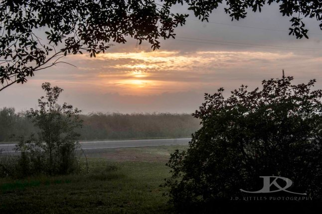 Misty morning sunrise photo taken by J.D. Kittles Photography and used with permission.