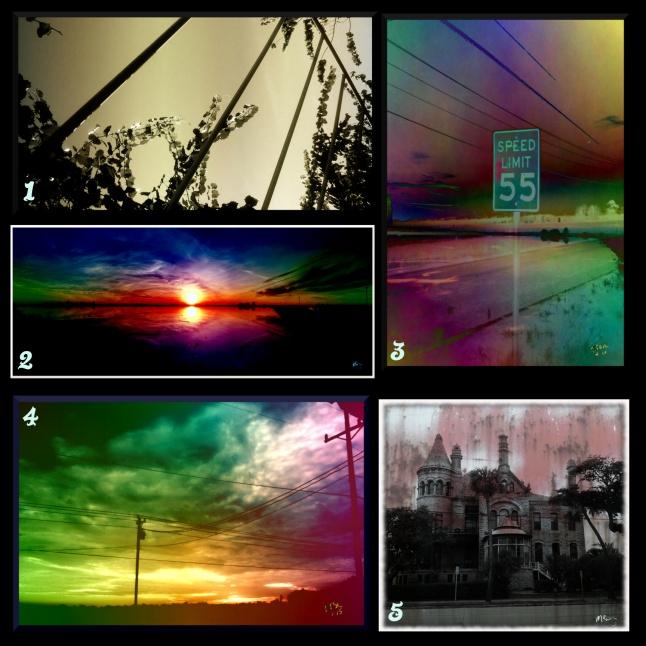 Photo Collage 1